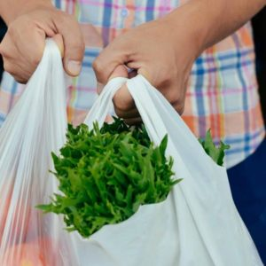 bolsas plasticas (3)