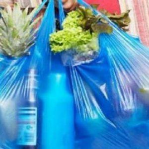 bolsas plasticas (6)