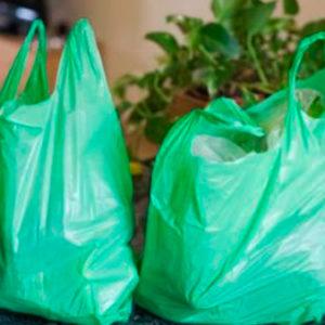 bolsas plasticas (8)