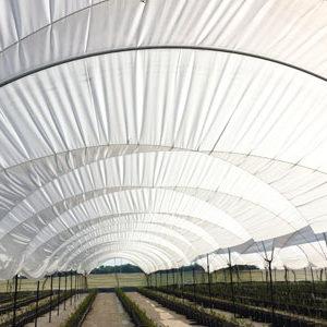 plasticos para invernadero (1)