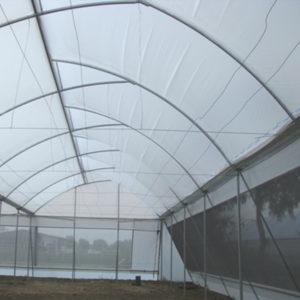 plasticos para invernadero (2)