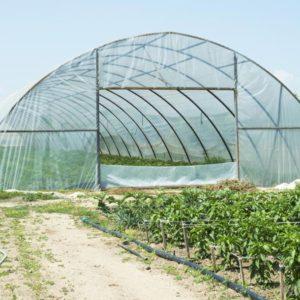 plasticos para invernadero (5)